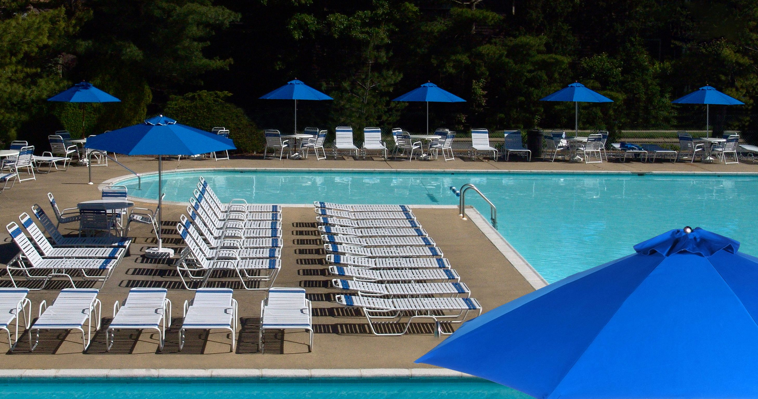 Commercial Pool Lounge Chairs Country Club Strap Commercial Pool Furniture Resort