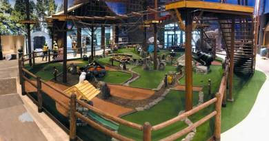 Widest Line of Miniature Golf Products and Services