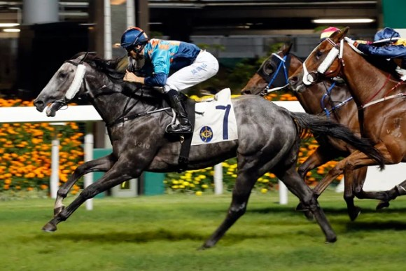 Super Turbo horse racing form guide | Racing and Sports