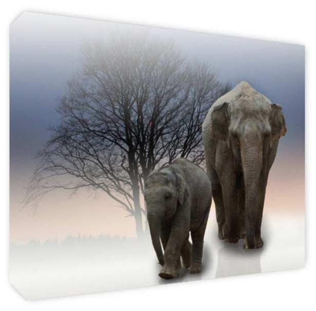 Cuadro Decorativo Canvas Elefantes