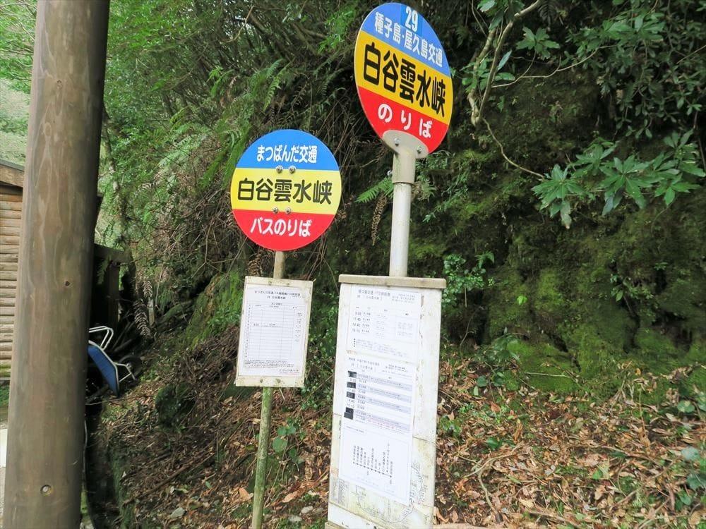 日本最早列入世界遺產!前往九州鹿兒島縣「屋久島」的交通 ...