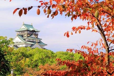 Osaka Travel Tips Shinsaibashi Dotonbori And Hotels In The