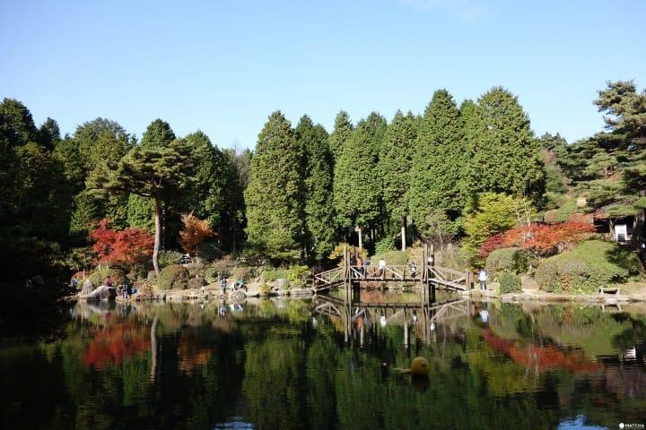 【神戶】不分晝夜賞楓景點:六甲山植物園&六甲山花園 | MATCHA - 日本線上旅遊觀光雜誌