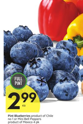 Pint Blueberries on sale Salewhaleca