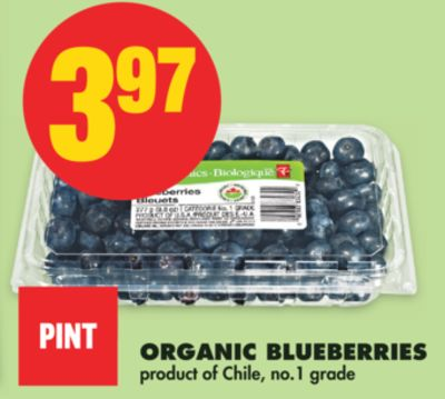 Pint Organic Blueberries on sale Salewhaleca