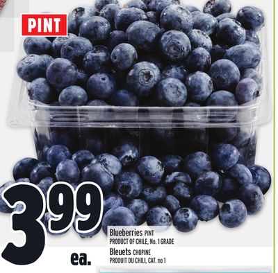 Blueberries Pint on sale Salewhaleca