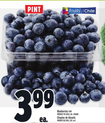 Pint Blueberries Product of Chile on sale Salewhaleca