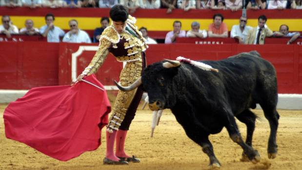 Spain bullring tours Beauty without the bloodshed  Stuff