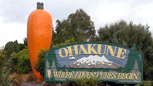 Image result for ohakune carrot