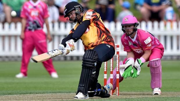 Image result for stephen murdoch cricket