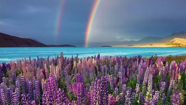 Fall Wallpaper Themes Tekapo Named The Best Place In New Zealand To Fall In Love