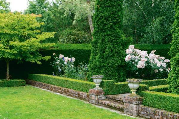 garden of week canterbury