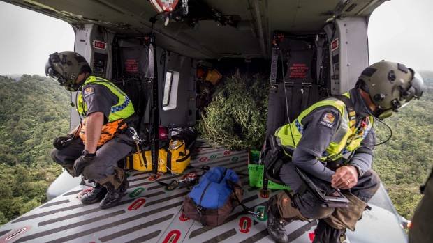 Personnel from the New Zealand Defence Force and New Zealand Police scan the bush for cannabis plants from an NH90 ...