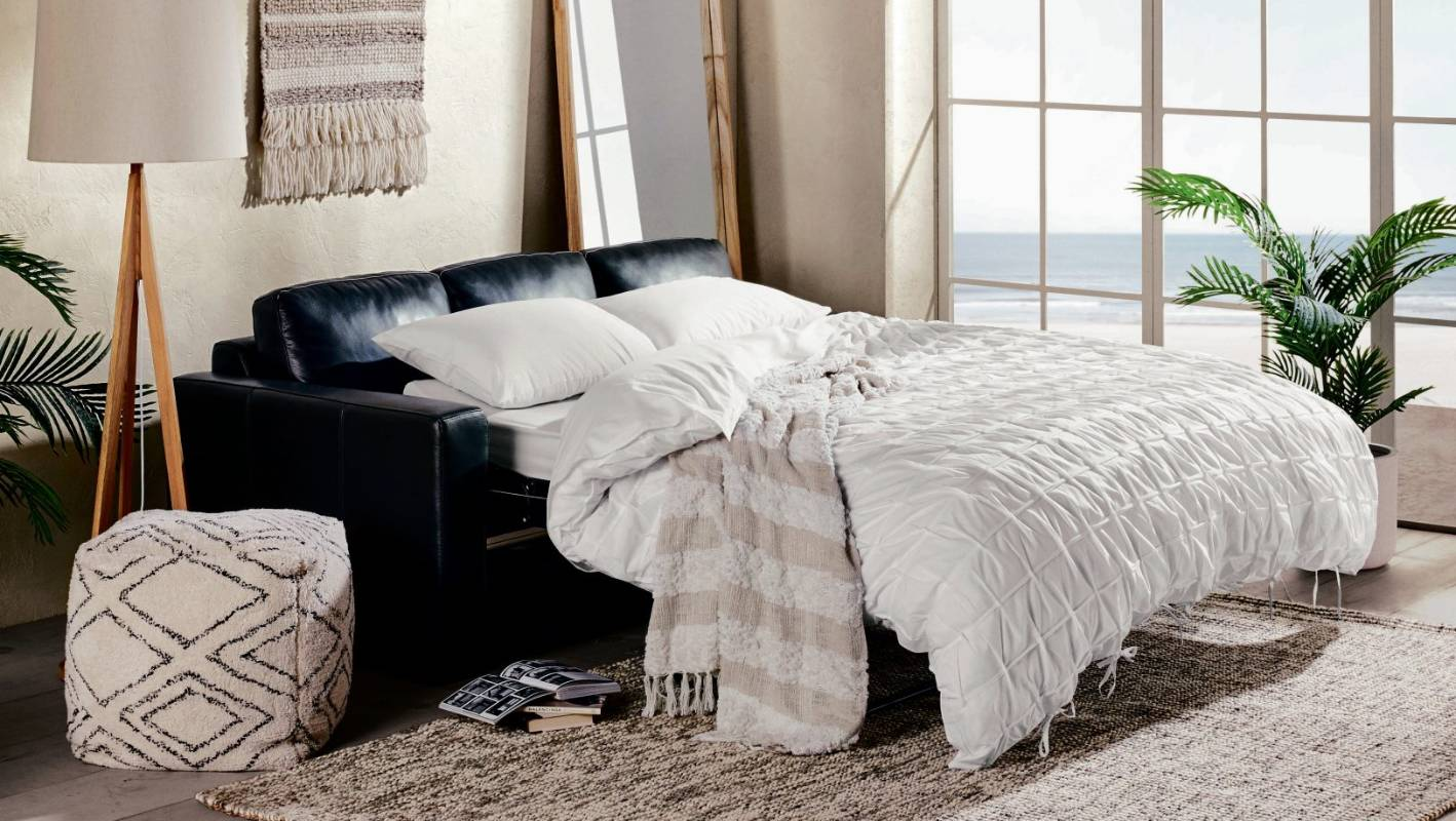 sofa bed nz wellington great dane beds what to do when you don 39t have a guest room