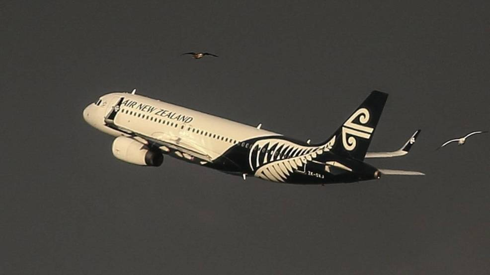 Air New Zealand Appoints Jeff Mcdowall Acting Chief Executive