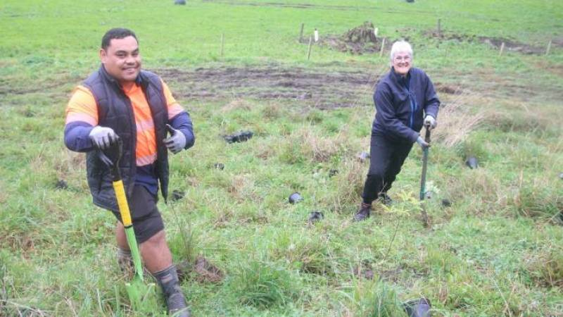 Raniera Gillett and Marjo Ermens helping to plant some of the 3000 native trees around bat hill at Buxton Farm.