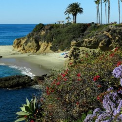 laguna-beach-orange-county-clearing-prime-brokerage-firm-location-broker-dealer
