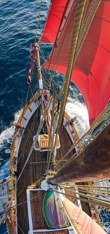 Q&A with Shane Granger, master of the Historic Vessel Vega