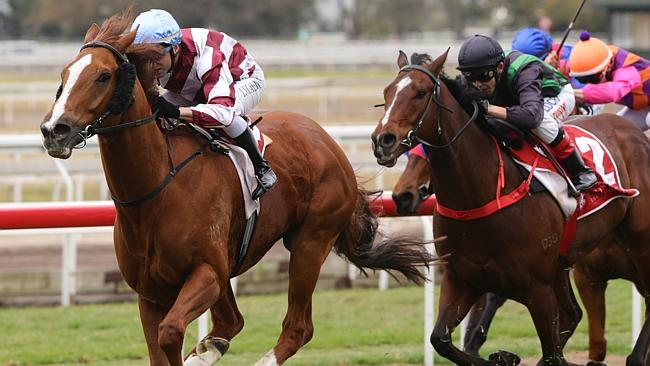 Larry Cassidy has a firm hold of Falino after the pair stormed home to win at Eagle Farm