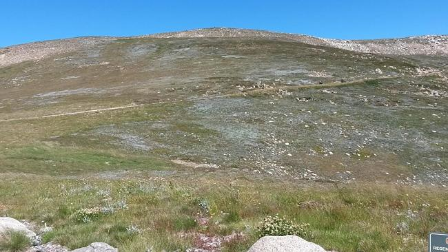 Mt Kosciuszko: Easier to climb than spell.