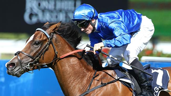 Hartnell firmed into favouritism for the Sydney Cup after his win in the Sky High Stakes