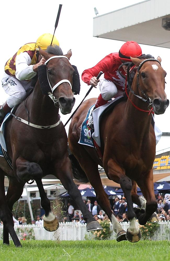 Repeat clash: Preferment and Volkstok'n'barrell (right) meet again in the ATC Australian