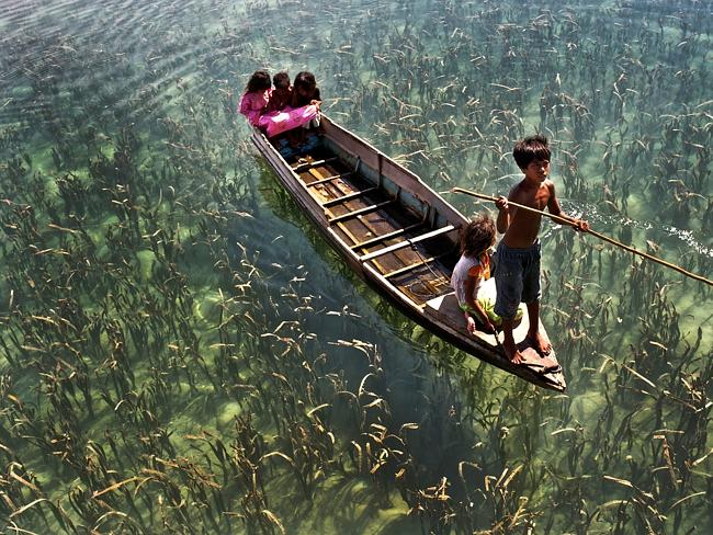 They navigate the waters on pirogues, which are long narrow canoes made from single tree