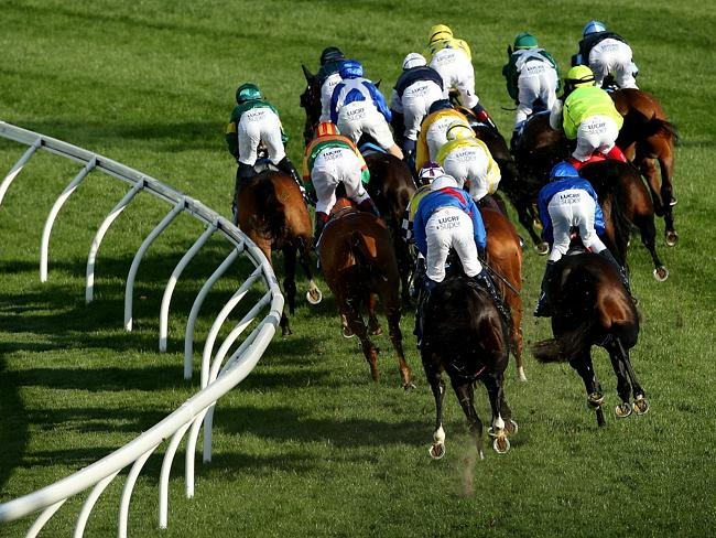 Runners compete in last year's Cox Plate at Moonee Valley. Will the cobalt hearings leave