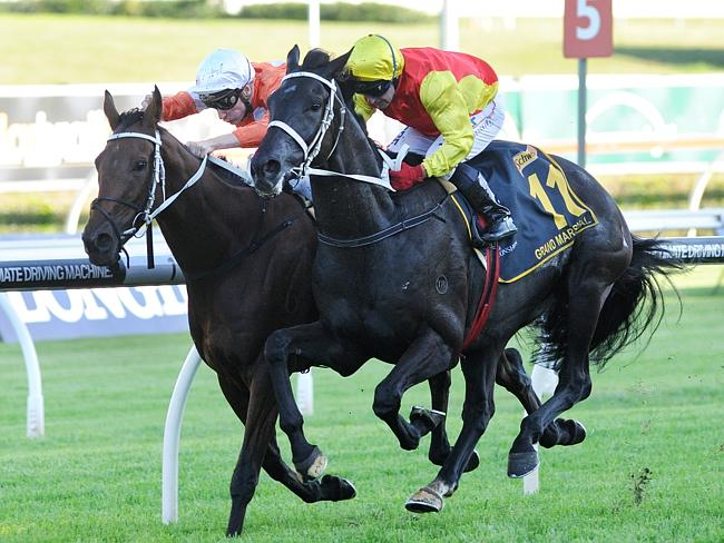Grand Marshal overhauls Who Shot Thebarman to win this year's Sydney Cup. Picture: Simon