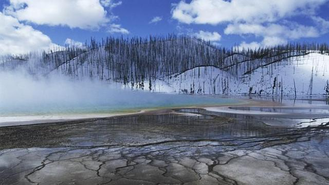 Fatal attraction ... mist over hot spring in winter landscape at Yellowstone National Park's Grand Prism...