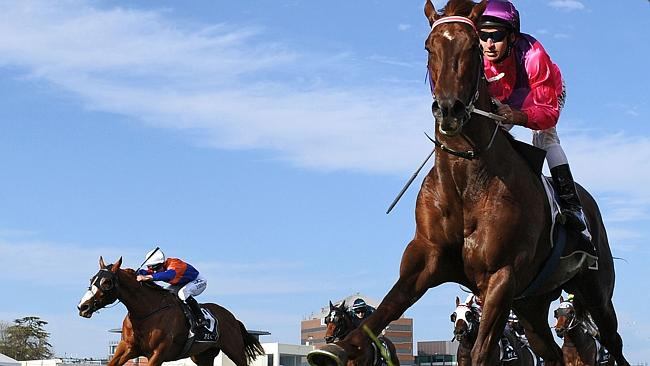 Rich Enuff beats home Looks Like the Cat (left) again, this time in the Caulfield Guineas