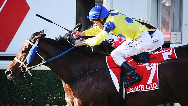 "Damien Oliver wins Race 8 on ""River Lad"" at Stradbroke Day at Eagle Farm Racecourse. Pics"