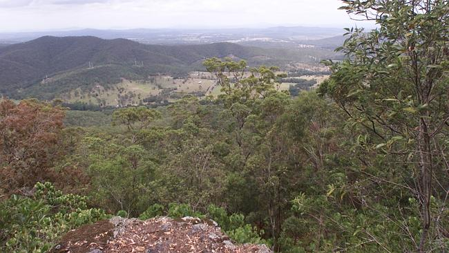 Proposed Cableway site for the Gold Coast Hinterland.