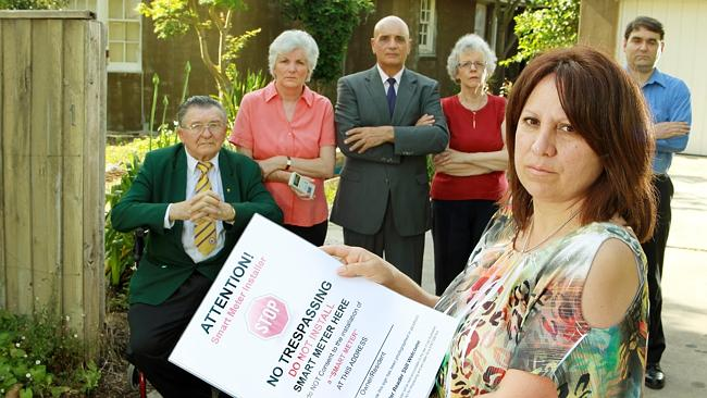 Virginia Lo Giudice with other smart meter opponents, including People Power Victoria — N