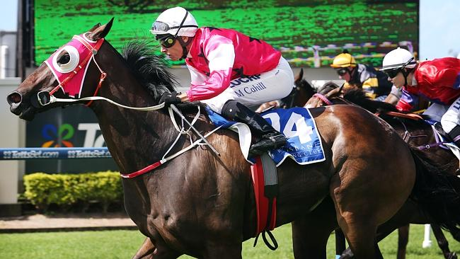 Michael Cahill wins on-board Blackboard Special at Doomben.