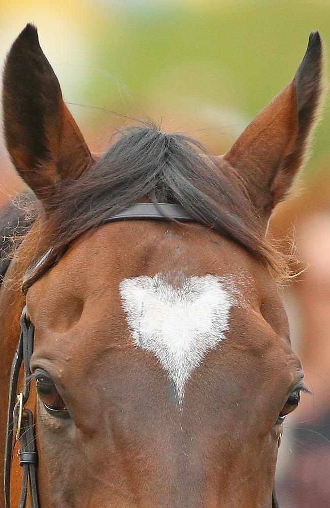 Heart of a champion: The famous heart-shaped marking on Lankan Rupee. Picture: Getty Imag