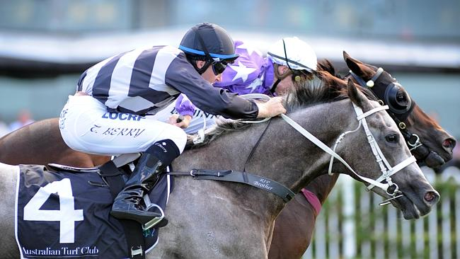 Weary won the Doncaster Prelude last year before going on to run third in the Doncaster M