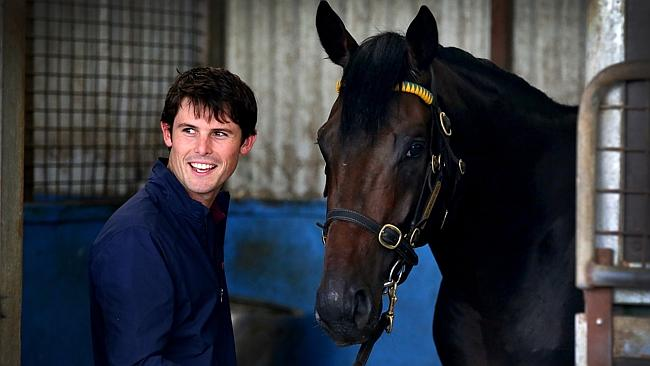 Trainer James Cummings with Ruling Dynasty at his Randwick stables. Picture Gregg Porteou