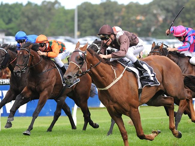 Last hurrah? Sweet Idea storms over the top of her rivals to win The Galaxy at Rosehill.
