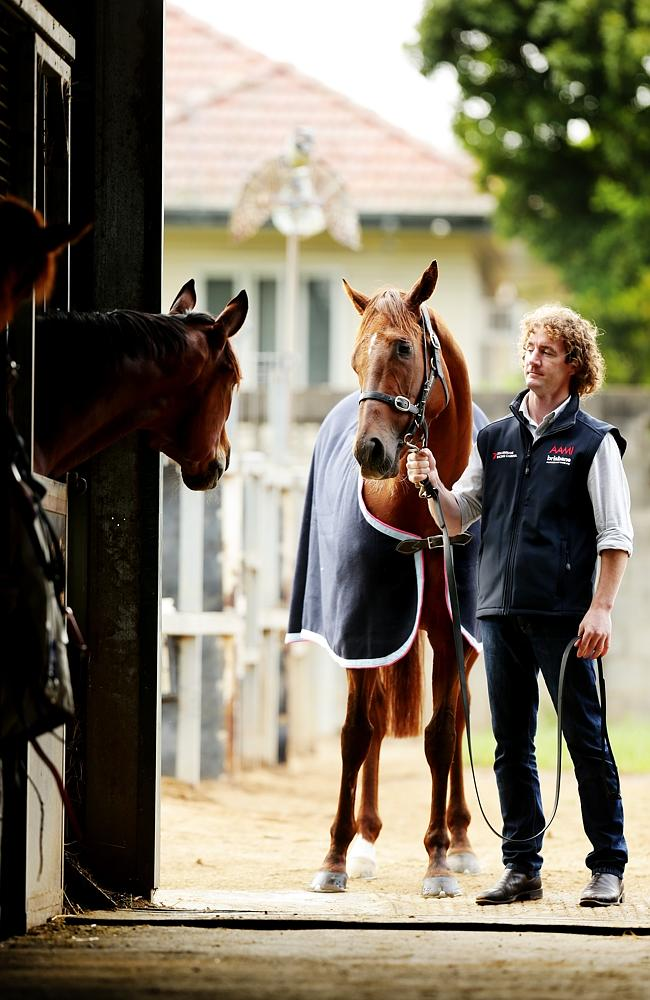 Ciaron Maher with Srikandi during last year's Queensland winter campaign. Picture: Mark C