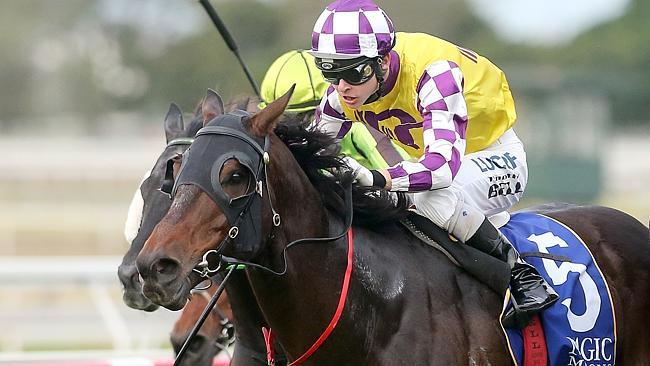 Sacred Star is back on track for the Doomben 10,000. Picture: Jono Searle