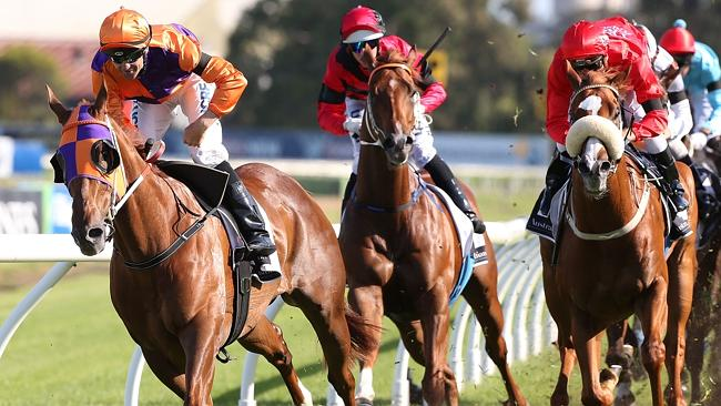 Dwayne Dunn pilots Queensland champion Our Boy Malachi to victory at Rosehill Gardens las