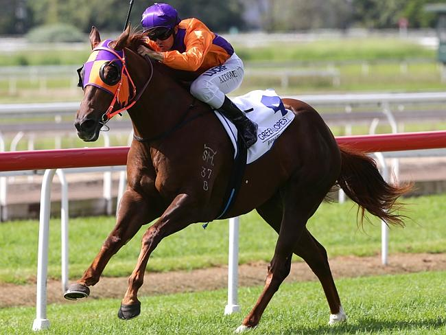 Question marks remain as to whether Our Boy Malachi can run out a solid 1350m at Group 1