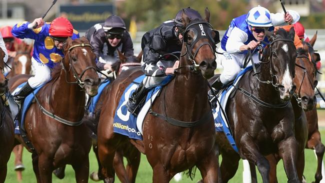 Charles In Charge has headed north after winning at Caulfield last start.