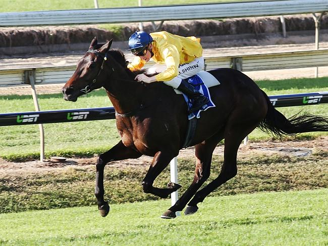 Blake Shinn and Bohemian Lily outstay their rivals last Saturday. Picture: Tara Croser