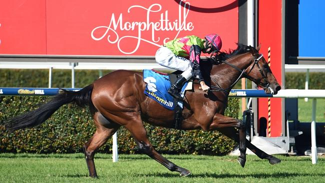 Prince Of Brooklyn, ridden by Dale Smith, wins impressively on debut at Morphettville las