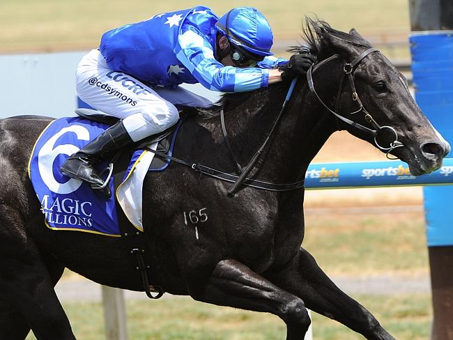 Queensland Guineas contender Murt The Flirt will be the biggest loss from Brendan McCarth