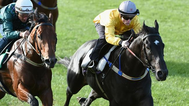Brazen Beau, with Craig William aboard, defeats Damien Oliver on Wandjina in a jump out a