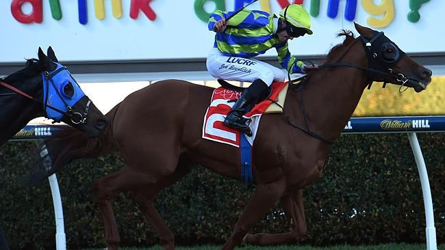 Joe Bowditch partners Heart Of A Lion to victory at Morphettville. The combination is at