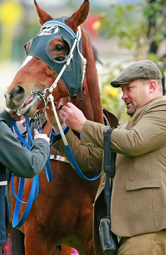 There is no link between trainer Peter Moody and vet Tom Brennan. Picture: Getty Images